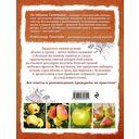 Яблони и груши. Секреты урожая от Октябрины Ганичкиной — фото, картинка — 8