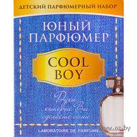 """Набор для опытов """"Юный парфюмер. Cool boy"""""""