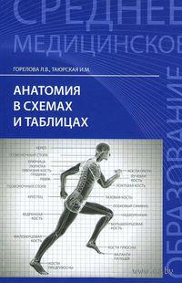 Анатомия в схемах и таблицах. Людмила Горелова, И. Таюрская