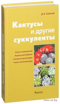 Кактусы и другие суккуленты в доме. Д. Семенов