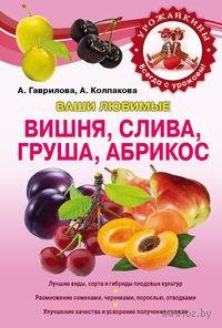 Вишня, слива, абрикос. Анастасия Колпакова, Анна Гаврилова