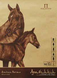 """Альбом для эскизов """"Арабчики"""" на картоне (50 листов, А-4)"""