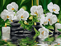 "Картина по номерам ""Орхидеи у ручья"" (300х400 мм)"