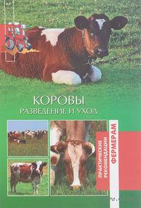 Коровы. Разведение и уход. О. Лукьянова