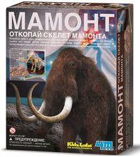 """Набор палеонтолога """"Скелет Мамонта"""""""