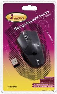 Беспроводная лазерная мышь SmartBuy 316AGL (Black)