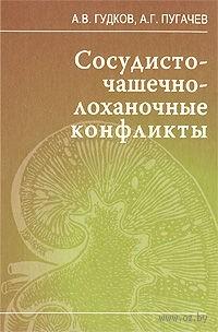 Сосудисто-чашечно-лоханочные конфликты. Александр Гудков, Анатолий Пугачев