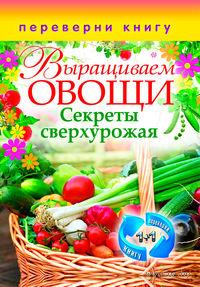 1+1, или Переверни книгу. Выращиваем овощи. Секреты сверхурожая. Выращиваем ягоды и фрукты. Секреты богатого урожая