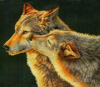 "Вышивка крестом ""Поцелуй волка"" (арт. DMS-70-35283)"