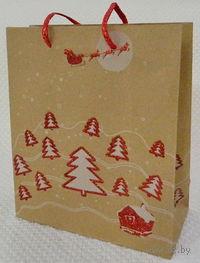 """Пакет бумажный подарочный """"Елочки"""" (33*43*10 см, арт. XD-C3103-2)"""
