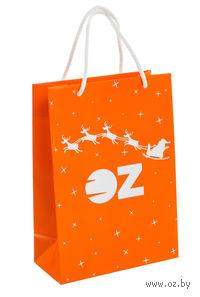 """Пакет подарочный бумажный """"Дед Мороз приносит радость"""" (15х21,5х8 см)"""