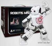 ROBOTIS MINI