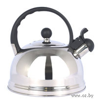 Чайник металлический со свистком (3 л; арт. WX-J-06)