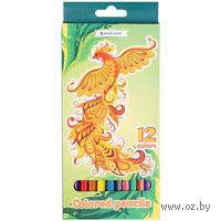 """Цветные карандаши """"Darvish"""" пластиковый корпус (12 цветов; арт. DV-119-12)"""