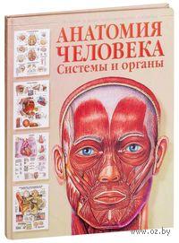 Анатомия человека. Системы и органы. Евгения Махиянова