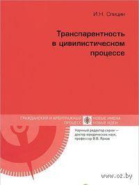 Транспарентность в цивилистическом процессе. И. Спицин