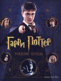 Гарри Поттер. Рождение легенды. Брайан Сибли