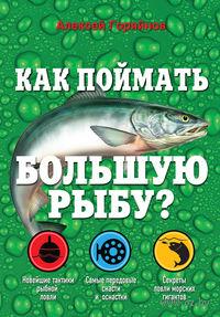 Как поймать большую рыбу?