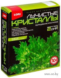 """Набор для выращивания кристаллов """"Лучистые кристаллы. Зеленый"""""""
