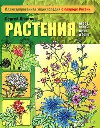 Растения лесов, полей, лугов и болот. Сергей Шустов