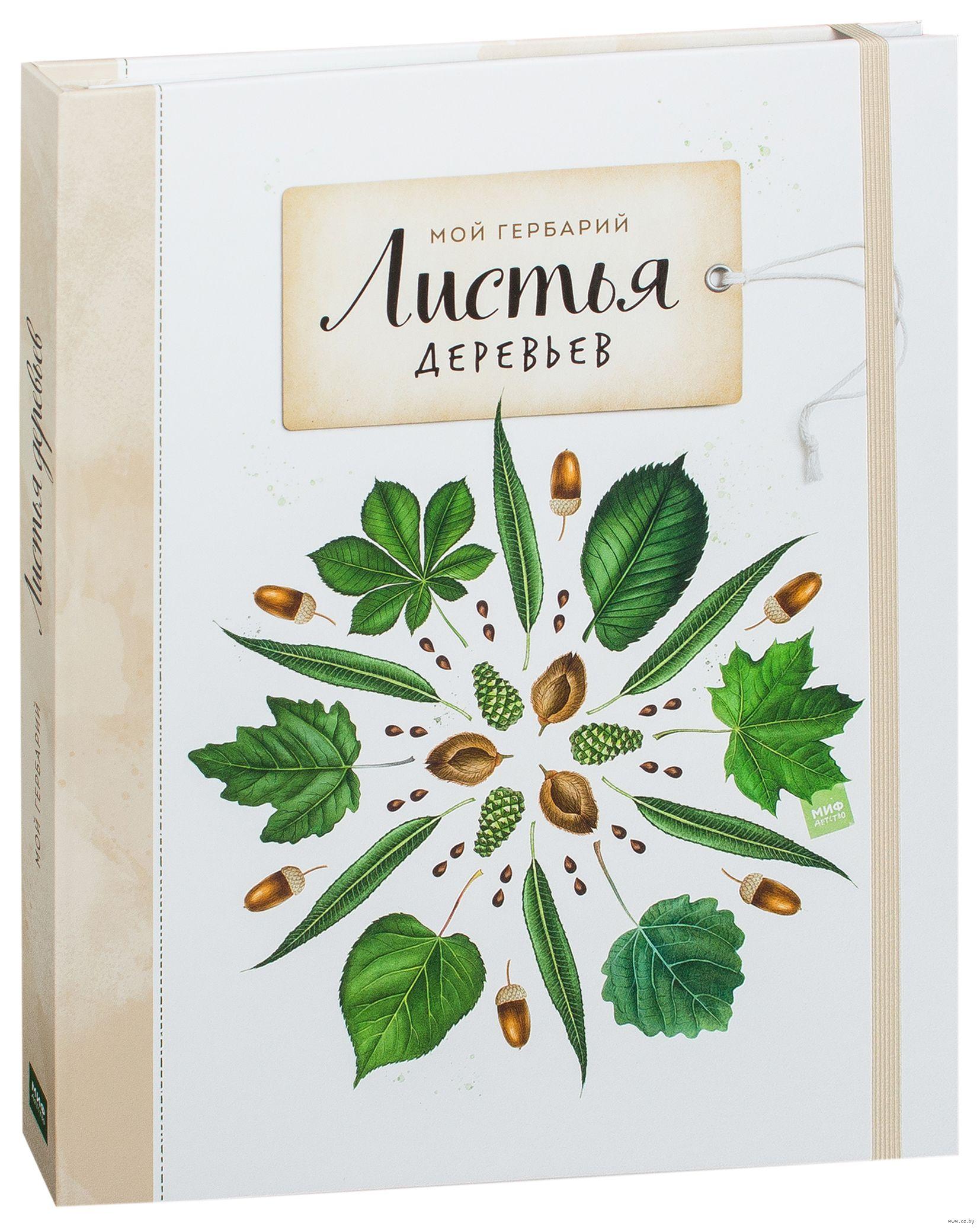 Мой гербарий. Листья деревьев» Анна Васильева - купить книгу «Мой ... 45fce482ef6