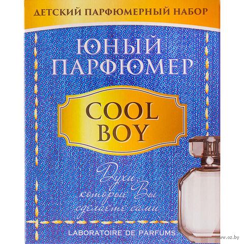 """Набор для изготовления духов """"Юный парфюмер. Cool boy"""""""