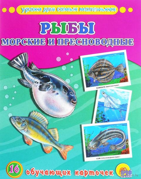 Рыбы. Морские и пресноводные. 16 обучающих карточек