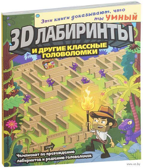 3D-лабиринты и другие классные головоломки — фото, картинка