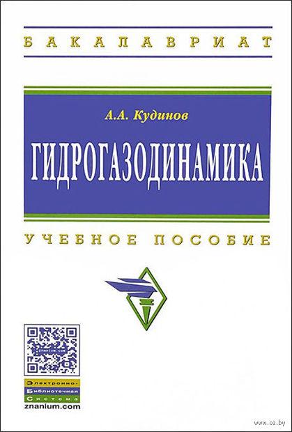 Гидрогазодинамика. Анатолий Кудинов