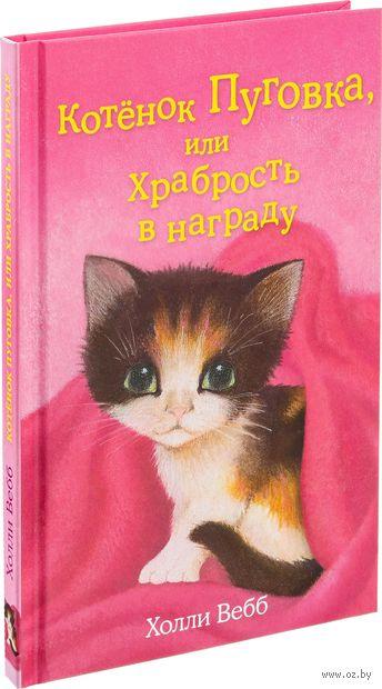 Котёнок Пуговка, или Храбрость в награду — фото, картинка