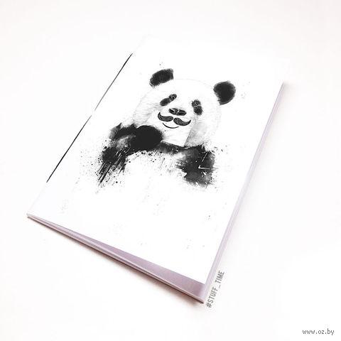 """Блокнот """"Панда с усами"""" (А5; арт. 506) — фото, картинка"""