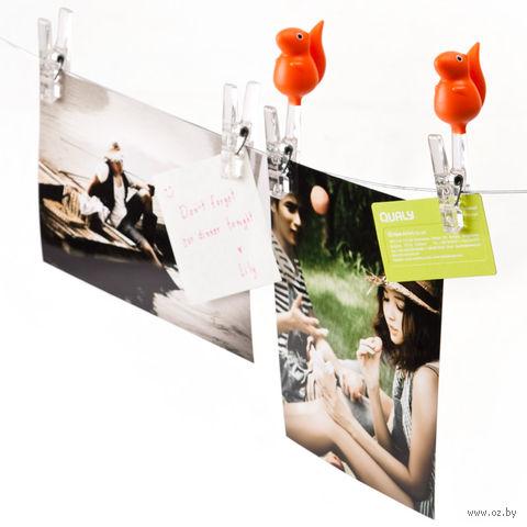 """Прищепки """"Squirrel"""" (оранжевые)"""