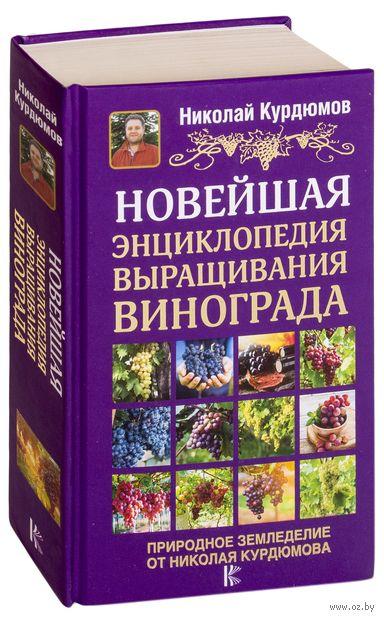 Новейшая энциклопедия выращивания винограда — фото, картинка