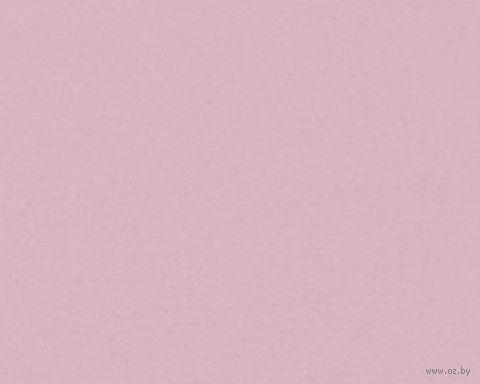 Паспарту (21x30 см; арт. ПУ2783) — фото, картинка