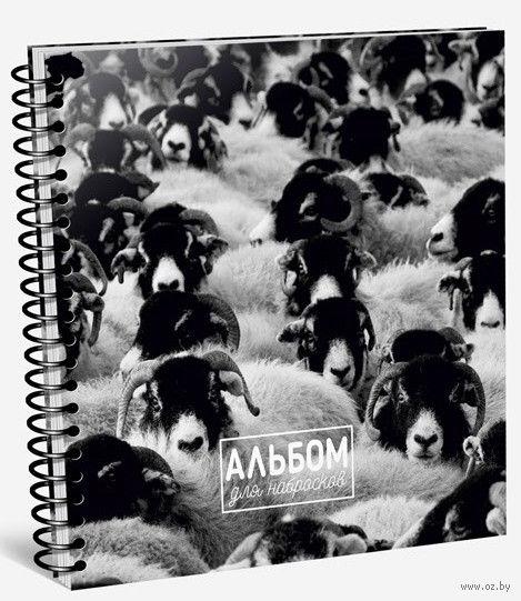 """Альбом для набросков """"Овцы"""" — фото, картинка"""