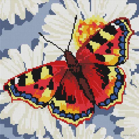 "Алмазная вышивка-мозаика ""Бабочка на ромашках"" (300х300 мм) — фото, картинка"