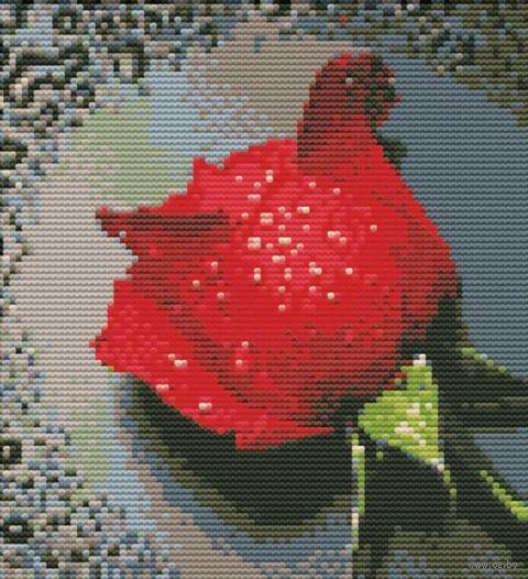 "Вышивка крестом ""Красный бутон"" (410х270 мм) — фото, картинка"