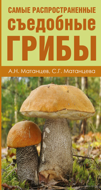 Самые распространенные съедобные грибы. Александр Матанцев, Светлана Матанцева