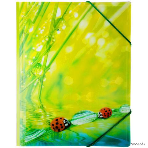 """Папка пластиковая на резинках """"Ladybird"""" (А4)"""