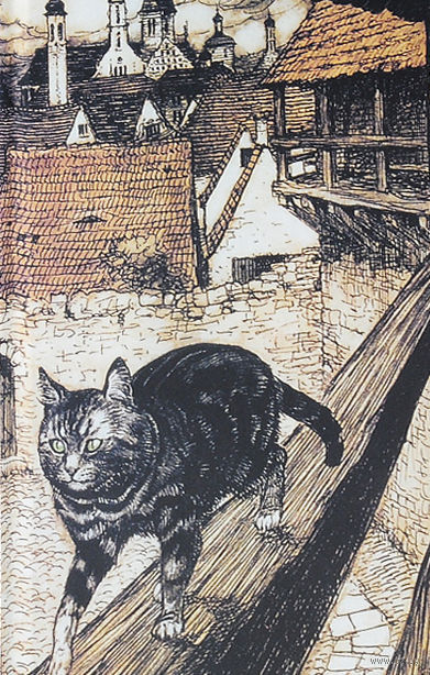 Кот. Блокнот для записей — фото, картинка