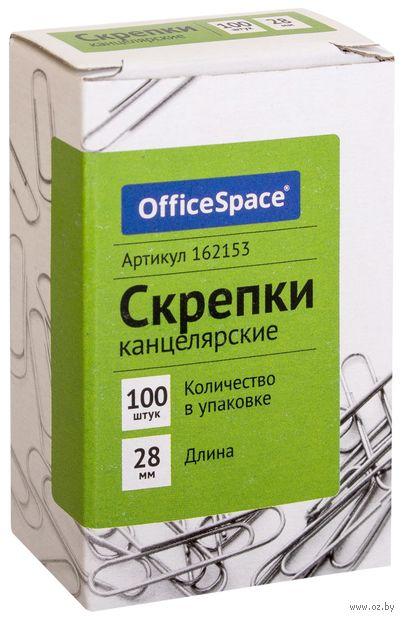 Скрепки канцелярские (100 шт.; 28 мм) — фото, картинка