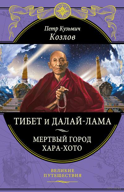Тибет и Далай-лама. Мертвый город Хара-Хото — фото, картинка