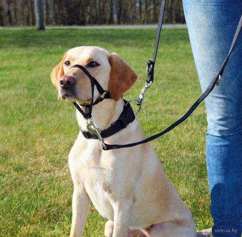 """Шлея тренировочная для собак """"Top Trainer Training Harness"""" (размер XL; 54-66 см; черный)"""
