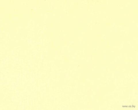 Паспарту (21x30 см; арт. ПУ2482) — фото, картинка