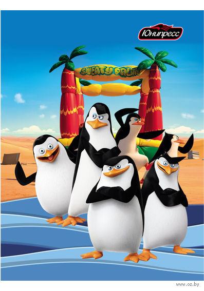 """Блокнот """"Пингвины"""" А6 (в клетку)"""