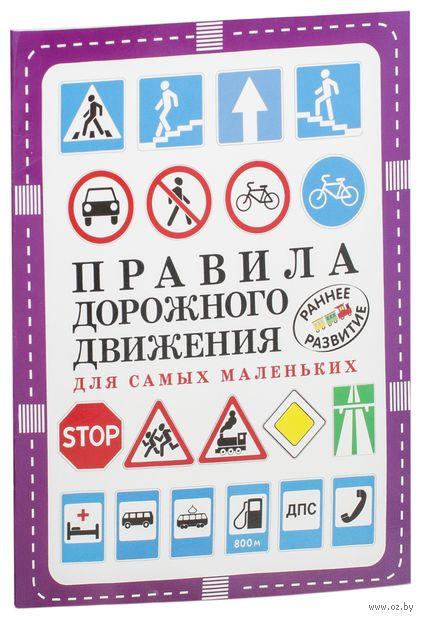 Правила дорожного движения для самых маленьких — фото, картинка