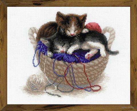 """Вышивка крестом """"Котята в корзине"""" (300х240 мм) — фото, картинка"""