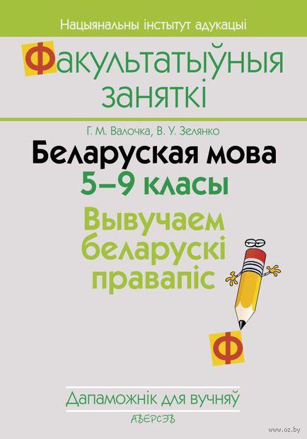 Беларуская мова. 5-9 класы. Вывучаем беларускі правапіс. Анна Волочко