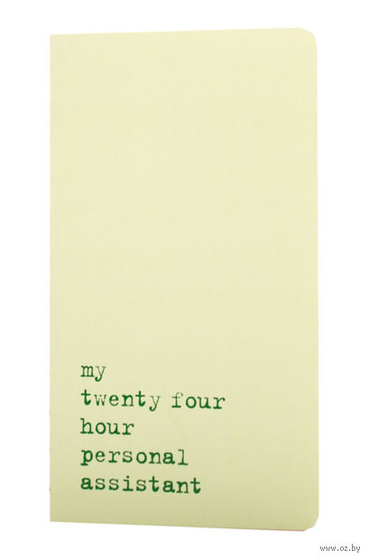 """Записная книжка в точку """"Chapter. My Twenty Four Hour"""" (115х210 мм; светло-зеленая) — фото, картинка"""