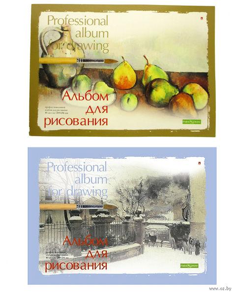 """Альбом для рисования """"Профессиональный"""" (А4; 20 листов; арт. 1-40-236; в ассортименте) — фото, картинка"""